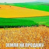 Перспективы рынка земли в Украине 2019 г.- 2021г.